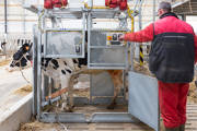 Lely - Etain, Frankrijk - Rep02 Treatmentbox(108) 9233.jpg