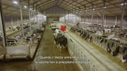 Lely Vector testimonial Vijvergerg-NL IT titels.mp4